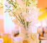 Цветочно-лимонное оформление на свадьбе