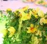Свежие цветы на свадьбе в лимонном стиле